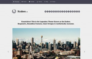 "Kraken Legal (a ""crack team"" of lawyers) has a decent, responsive site."